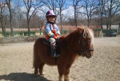 poniesnew1