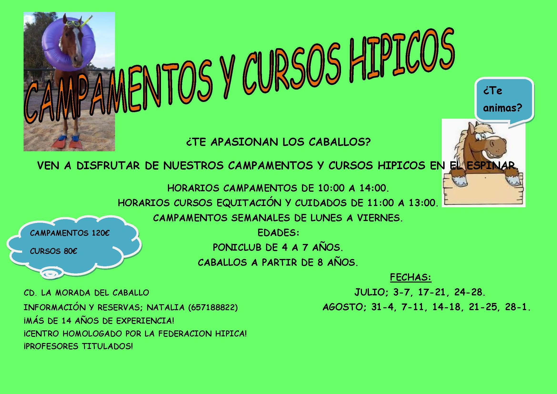 CAMPAMENTOS Y CURSOS HIPICOS